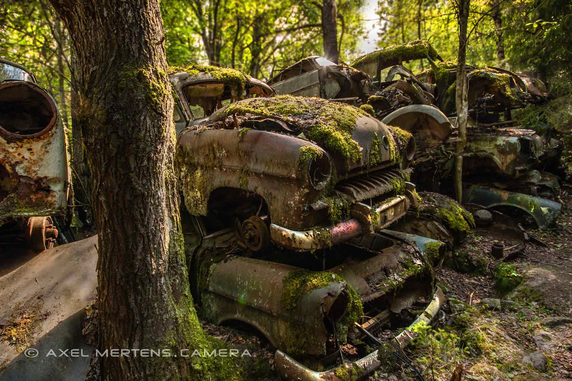 lost place – Autofriedhof